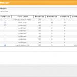 IP-Admin-ipam-custom-field-management